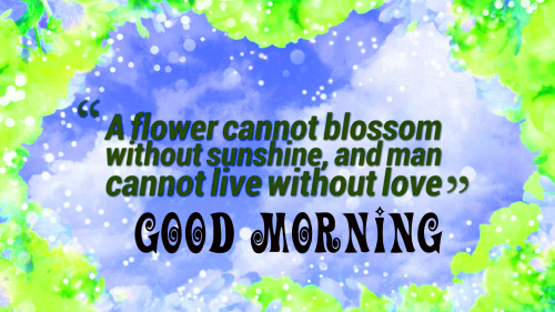 Good Morning My Sunshine Quotes Images Pics Download