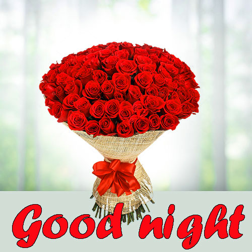 RED ROSE GOOD NIGHT WISHES IMAGES WALLPAPER PICS HD