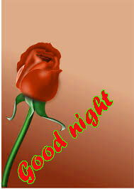 RED ROSE GOOD NIGHT IMAGES WALLPAPER PICS FOR FACEBOOK