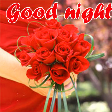 RED ROSE GOOD NIGHT IMAGES WALLPAPER PICS FREE HD
