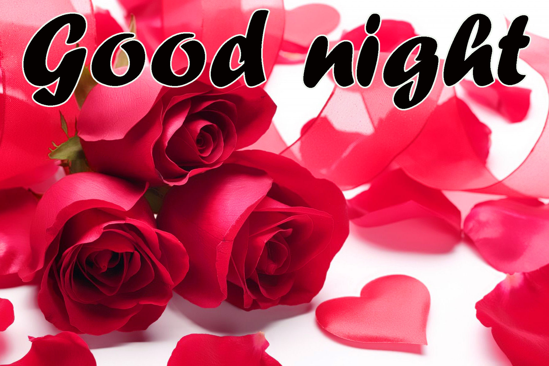 RED ROSE GOOD NIGHT WISHES IMAGES WALLPAPER PICTURES DOWNLOAD