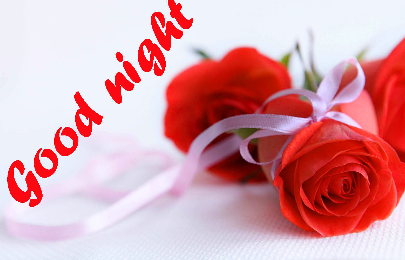 RED ROSE GOOD NIGHT WISHES IMAGES WALLPAPER PICS HD DOWNLOAD