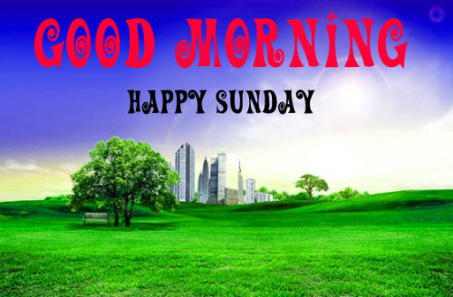 SUNDAY GOOD MORNING IMAGES WALLPAPER PIC FOR WHATSAPP