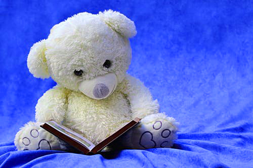Teddy bear images Photo for Whatsapp
