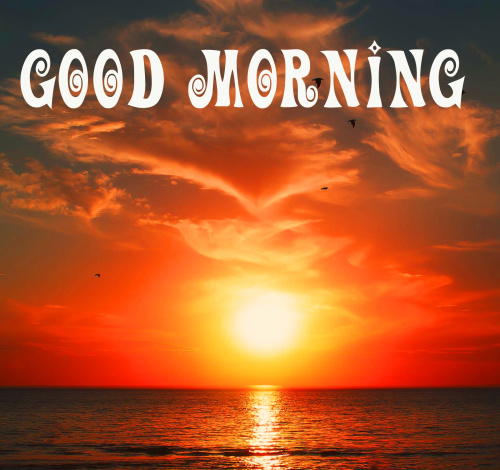 good morning sunrise Pictures HD Download for friend