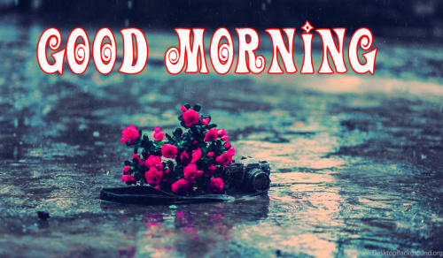 good morning wishes for a rainy day Images Pics Wallpaper Download