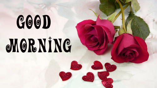 Good Morning Wishes Images Photo Download