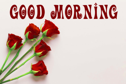 Good Morning Wishes Images Pic Wallpaper Free Download
