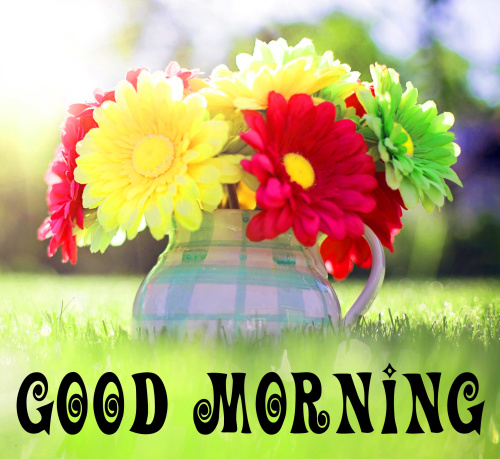 spring Good morning wishes Images Wallpaper Pics fREE