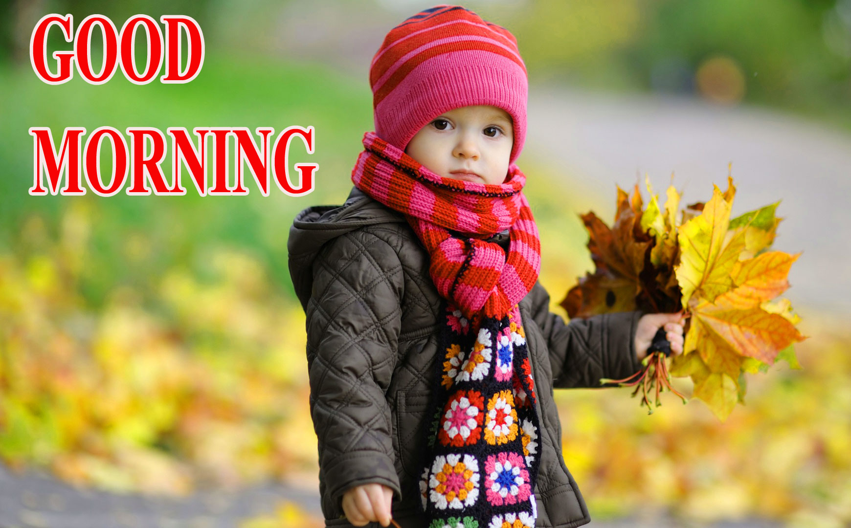 BEAUTIFUL LATEST AMAZING ALL GOOD MORNING IMAGES PICS DOWNLOAD IN HD