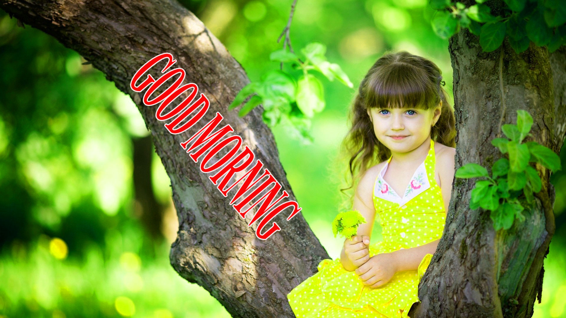 BEAUTIFUL LATEST AMAZING ALL GOOD MORNING WISHES IMAGES WALLPAPER PICS FOR GIRLFRIEND