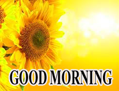 BEAUTIFUL LATEST AMAZING ALL GOOD MORNING WISHES IMAGES WALLPAPER PICS FREE DOWNLOAD