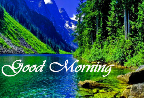 Nature Good Morning Pics Images Wallpaper Download