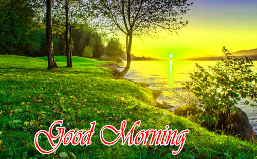 NATURE GOOD MORNING PICS IMAGES WALLPAPER PICS NEW LATEST FREE