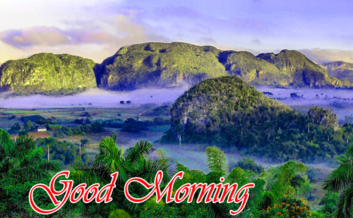 NATURE GOOD MORNING PICS IMAGES PICS PHOTO DOWNLOAD