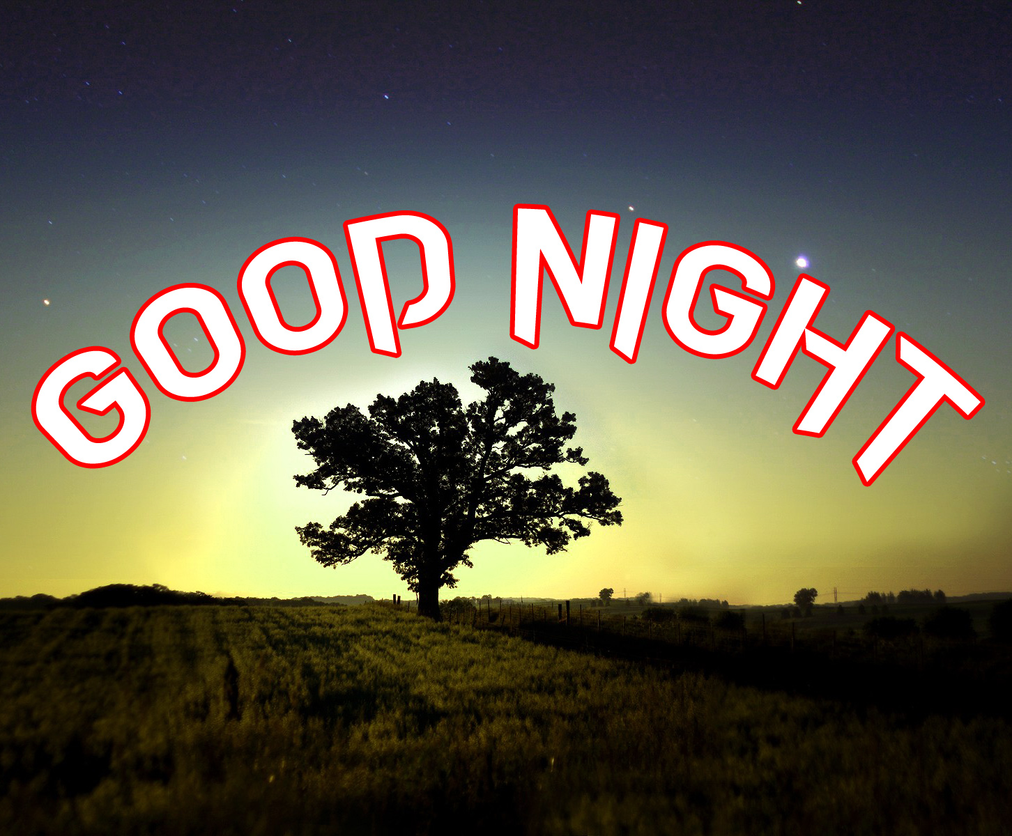 DOWNLOAD GOOD NIGHT IMAGES WALLPAPER PHOTO FREE HD