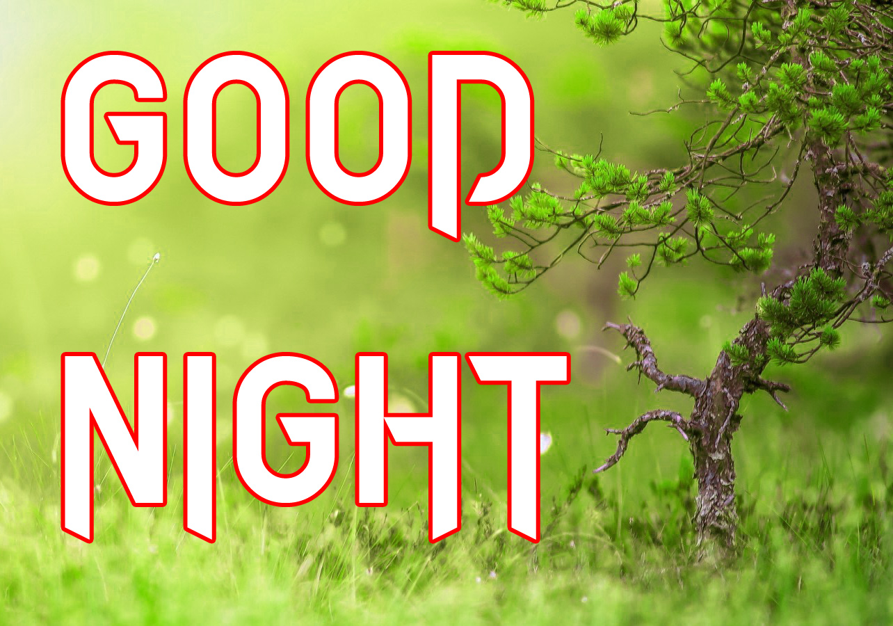 DOWNLOAD GOOD NIGHT IMAGES PHOTO PICS DOWNLOAD