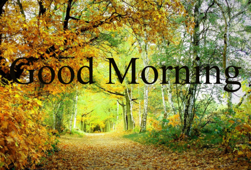 GOOD MORNING SISTER IMAGES WALLPAPER PICS DOWNLOAD