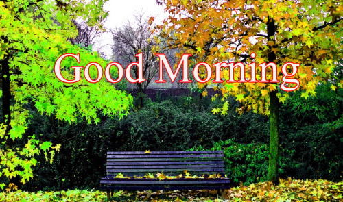 GOOD MORNING SISTER IMAGES PHOTO FOR FRIEND