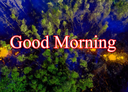 GOOD MORNING DESIGN IMAGES WALLPAPER PICS DOWNLOAD