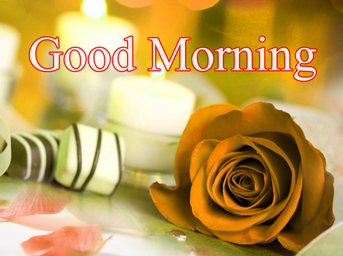 GOOD MORNING DESIGN IMAGES PICTURE HD