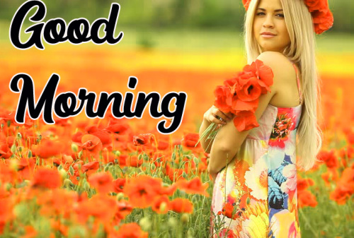 GOOD MORNING HD IMAGES PHOTO PICTURES FREE HD