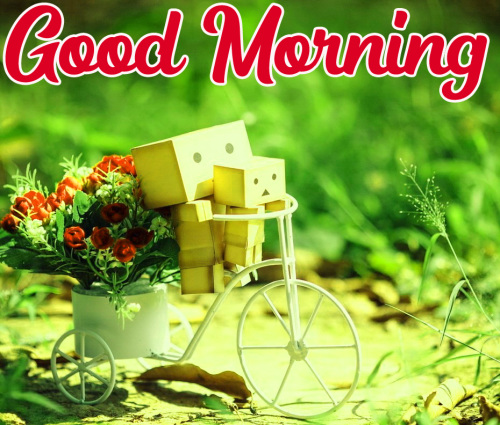 GOOD MORNING HD IMAGES PICTURES PHOTO HD