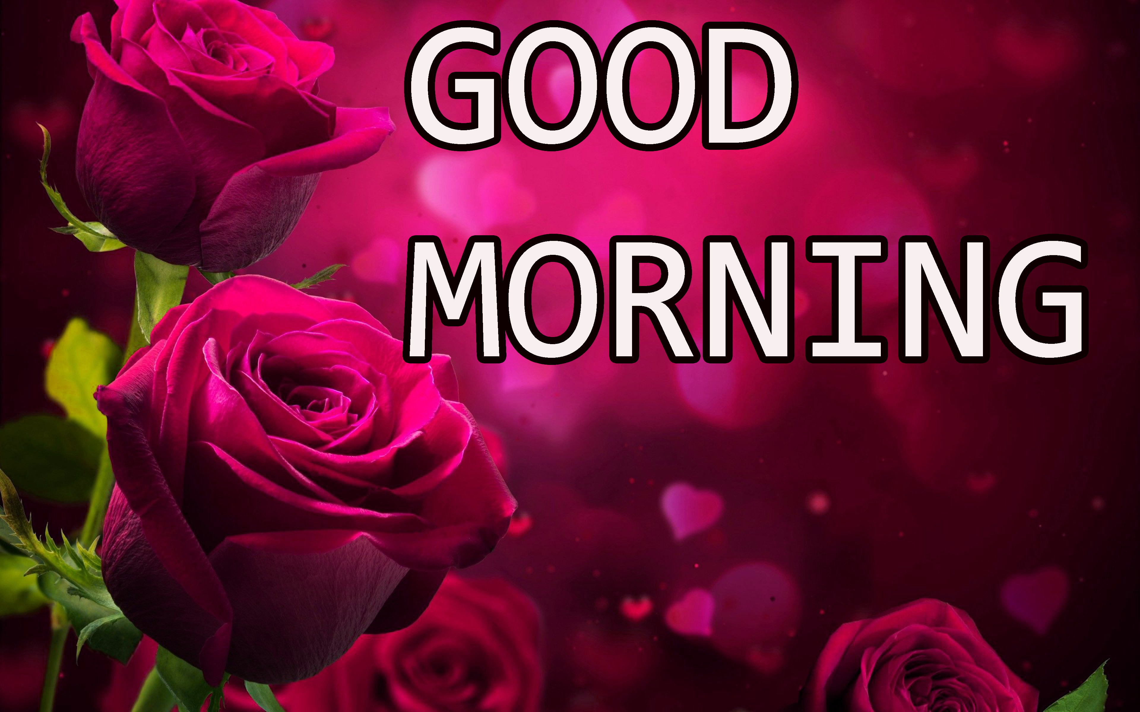 GOOD MORNING IMAGE PICS PHOTO HD