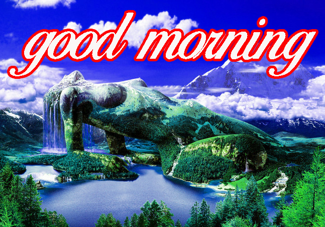 GOOD MORNING IMAGE PICTURES PHOTO FREE HD DOWNLOAD