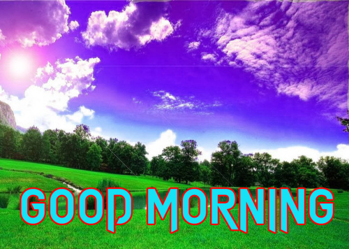 GOOD MORNING IMAGES  PHOTO PICTURES PICS DOWNLOAD