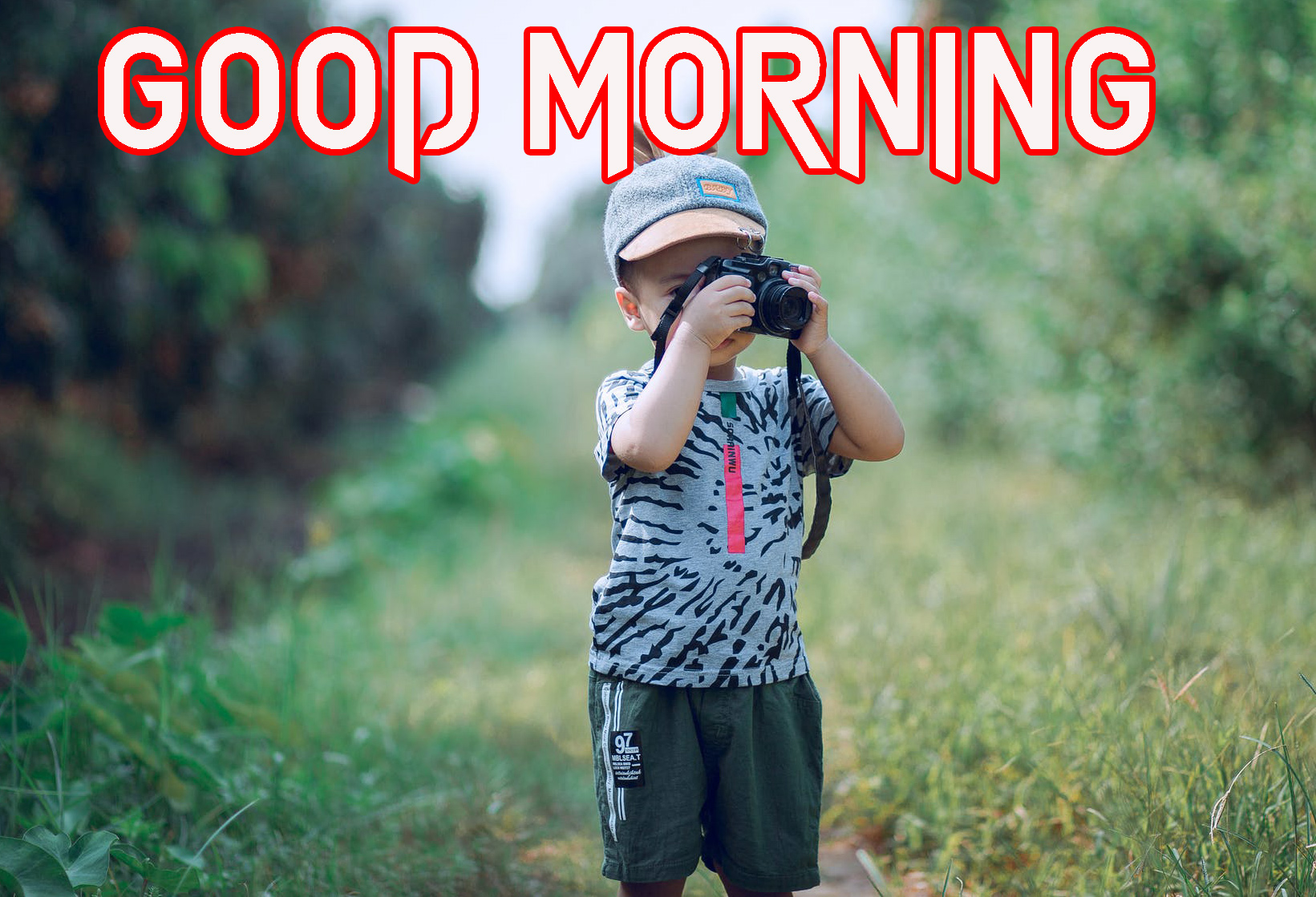 GOOD MORNING IMAGES PHOTO PICTURES HD