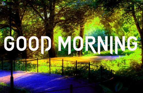 GOOD MORNING IMAGES PHOTO WALLPAPER PICS FREE HD DOWNLOAD