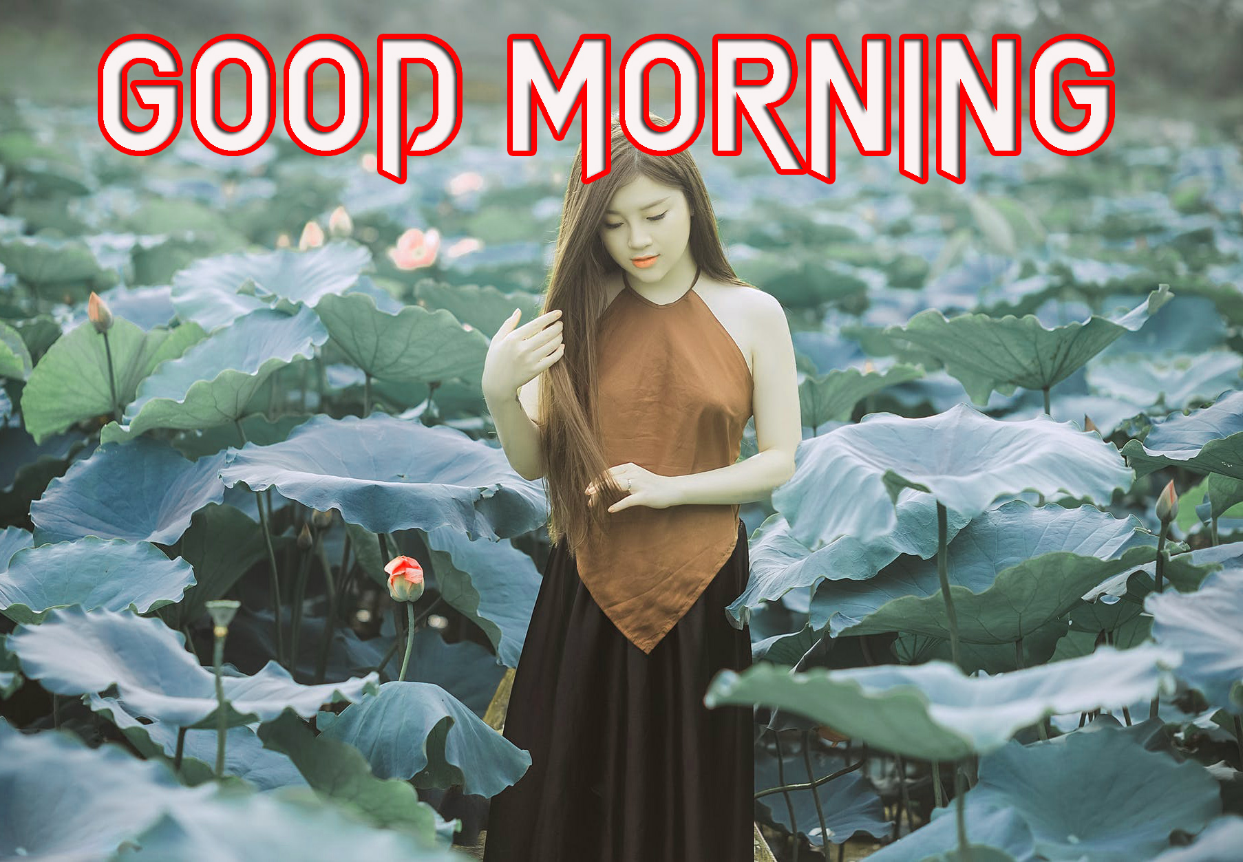 GOOD MORNING IMAGES WALLPAPER PHOTO FOR BEST FRIEND