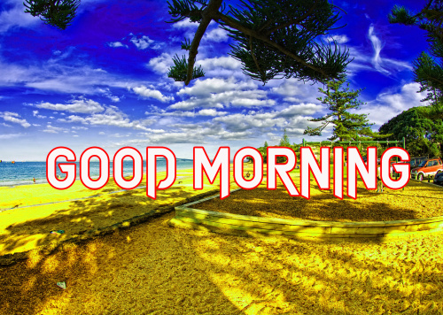GOOD MORNING IMAGES  PICTURES PICS PHOTO HD