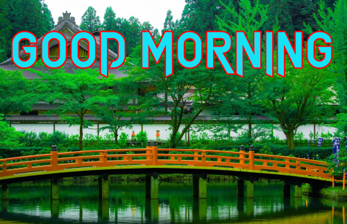 GOOD MORNING IMAGES  PHOTO WALLPAPER PHOTO DOWNLOAD