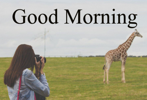 GOOD MORNING IMAGES FOR BROTHER AND SISTER PICTURES PHOTO HD