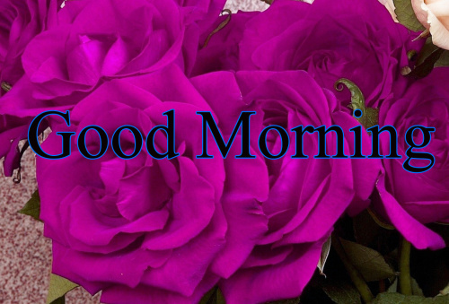 GOOD MORNING IMAGES FOR INDIAN BOYS & GIRLS & ALL FRIENDS PICTURES PICS HD