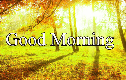 GOOD MORNING IMAGES FOR INDIAN BOYS & GIRLS & ALL FRIENDS PHOTO WALLPAPER FREE HD DOWNLOAD