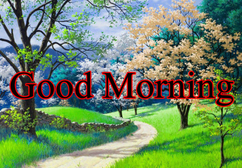 GOOD MORNING IMAGES FOR INDIAN BOYS & GIRLS & ALL FRIENDS PHOTO FREE DOWNLOAD
