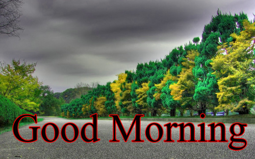 GOOD MORNING IMAGES FOR INDIAN BOYS & GIRLS & ALL FRIENDS WALLPAPER PICS HD