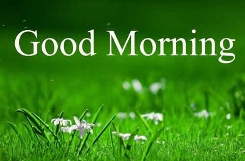 GOOD MORNING IMAGES FOR INDIAN BOYS & GIRLS & ALL FRIENDS PICTURES PHOTO DOWNLOAD