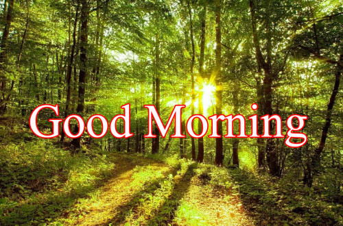 GOOD MORNING IMAGES FOR INDIAN BOYS & GIRLS & ALL FRIENDS WALLPAPER PICS FREE HD
