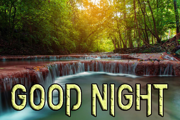 GOOD NIGHT IMAGES  PHOTO PICS DOWNLOAD & SHARE
