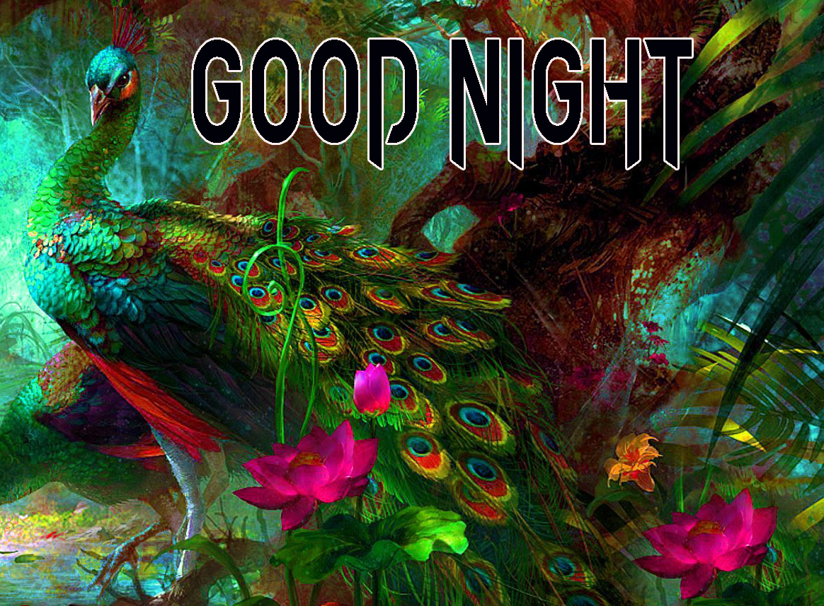 GOOD NIGHT IMAGES WALLPAPER PICS FOR WHATSAPP