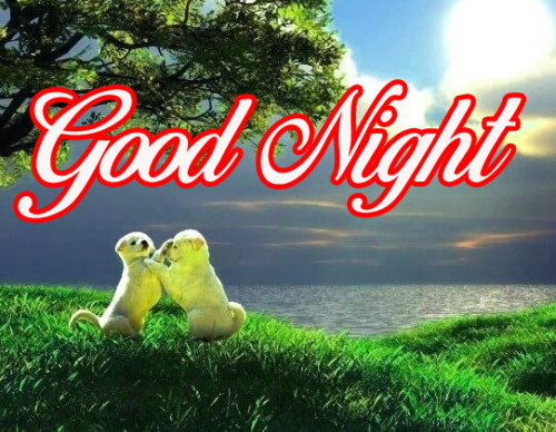 GOOD NIGHT IMAGES FOR WHATSAPP  WALLPAPER PICS DOWNLOAD