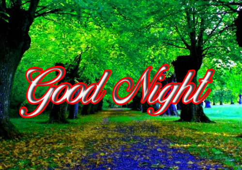 GOOD NIGHT IMAGES PHOTO WALLPAPER FREE HD DOWNLOAD