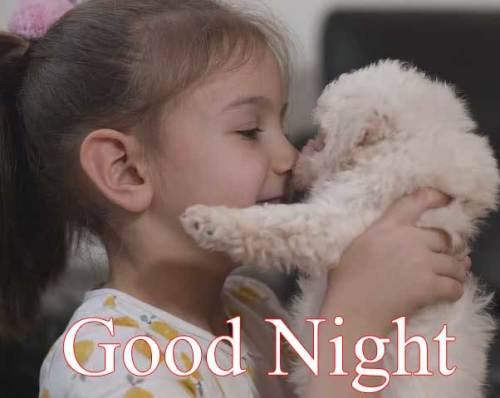 Good Night New images wallpaper pictures photo free hd download