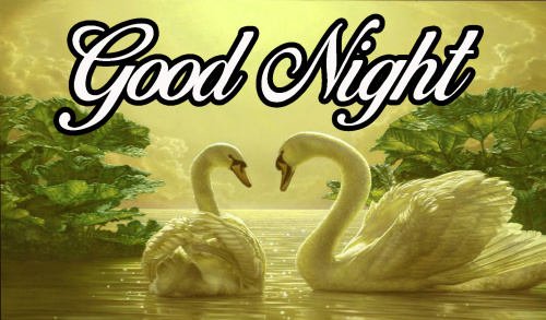 GOOD NIGHT WISHES IMAGES WALLPAPER PHOTO HD