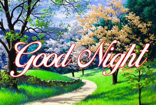 GOOD NIGHT WISHES IMAGES PICTURES PHOTO HD