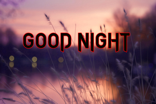 GOOD NIGHT WISHES IMAGES PICTURES PHOTO DOWNLOAD